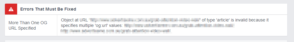 Facebook Debugger result