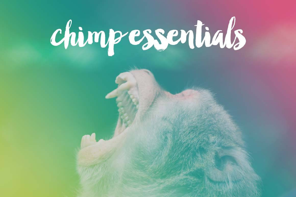 Master MailChimp with the Video Course 'Chimp Essentials' – 68% off!