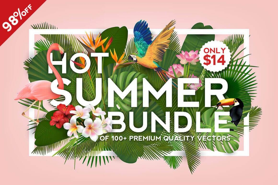 Hot Summer Bundle of 100+ Premium Quality Vectors – only $14!