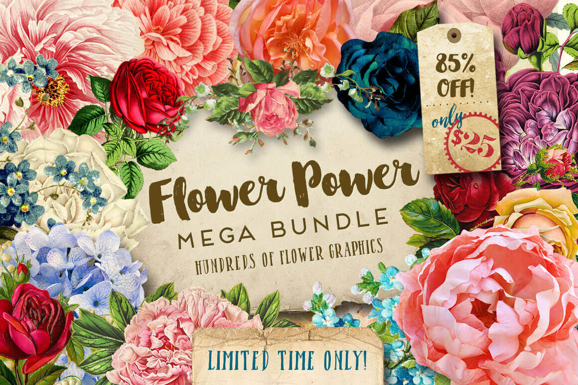 BUNDLE: Gorgeous Flower Graphics – only $25!