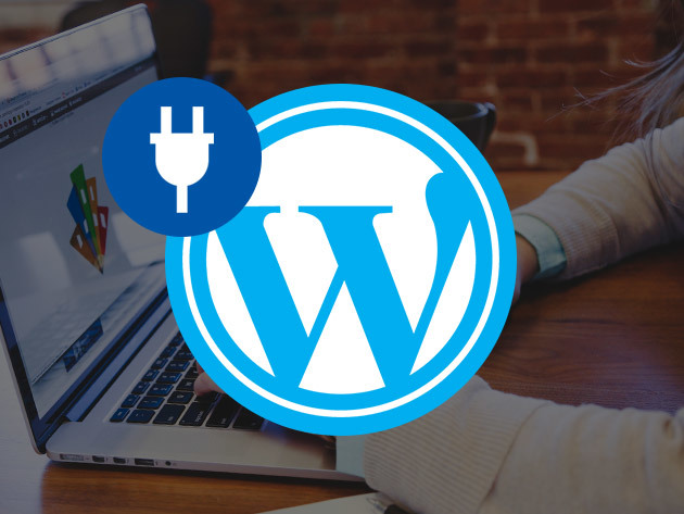 2017 WordPress Mega Plug-in Bundle for $39