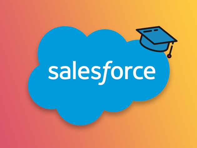 Salesforce Power User Course for $24