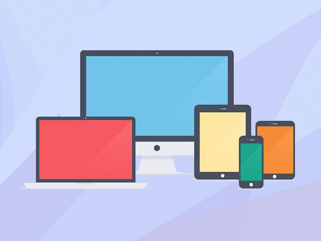 Learn Responsive Web Design From Scratch for $18