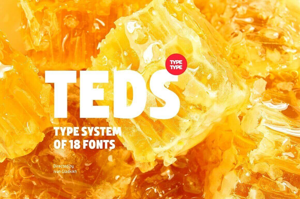 TT Teds Font Family (18 unique fonts) – only $9!
