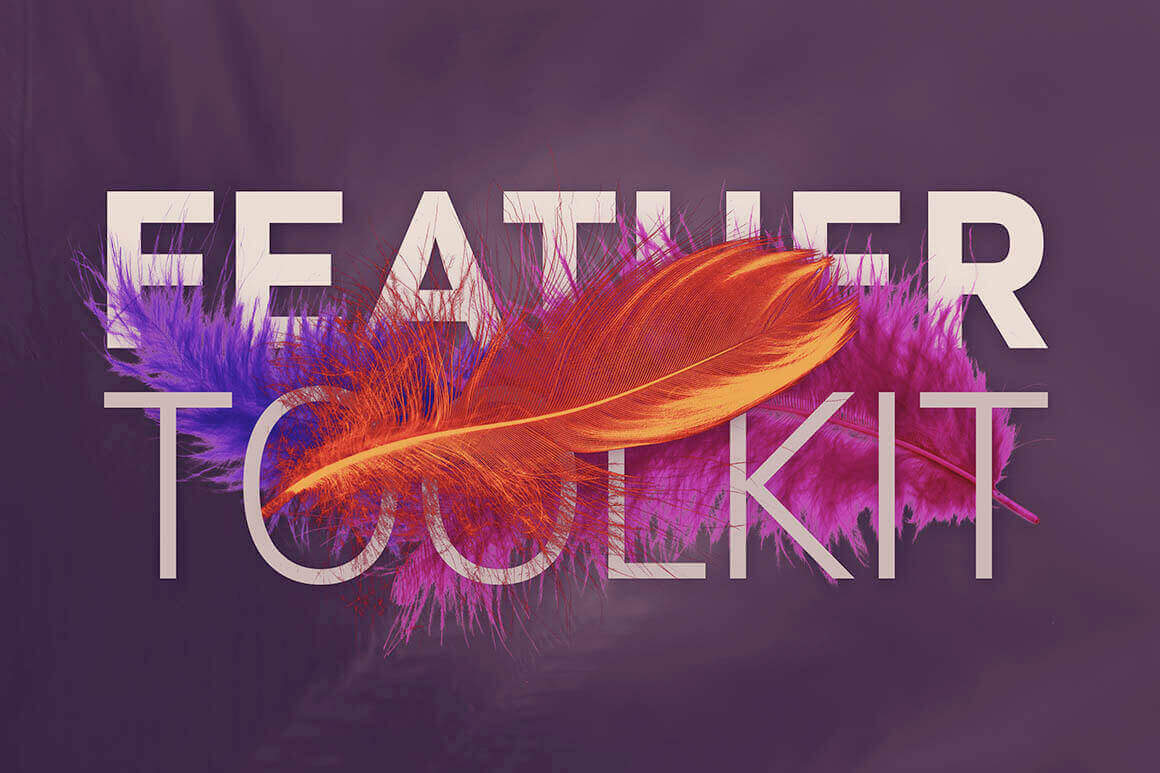 Feather Toolkit: 250+ Hi-Res Feather-Themed Photos, Backgrounds, Templates – only $10!