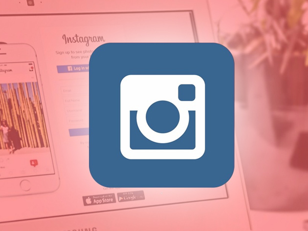 Instagram Marketing Crash Course for Entrepreneurs for $15