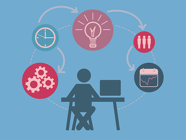 Project Management (PMP) Certification Training for $29