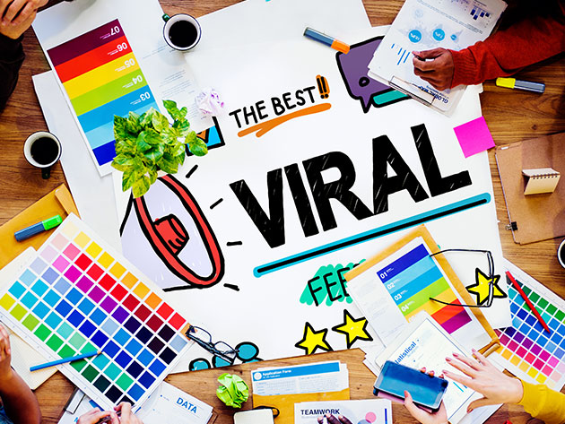 Online Diploma in Viral Marketing: Live Course Webinar for $9