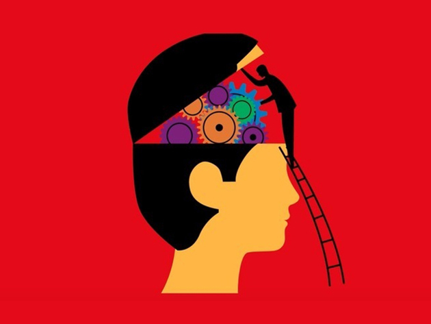 That Stranger In The Mirror: Neuroscience For Everyone for $29