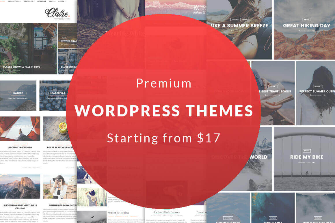 8 Premium Blog WordPress Themes – only $17!