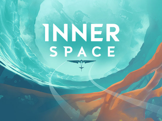 InnerSpace Game for $16