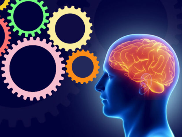 Full Neuro Linguistic Programming (NLP) Diploma Course for $29