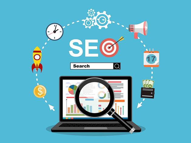 Search Engine Optimization Certification Training Bundle for $29