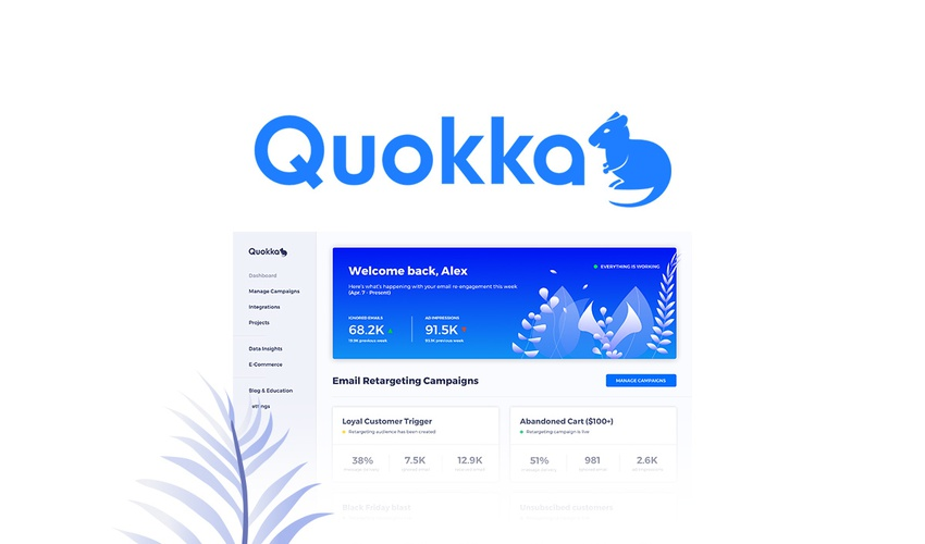 Lifetime Deal to Quokka for $49