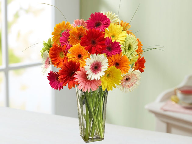 florists.com Mother's Day Special for $15