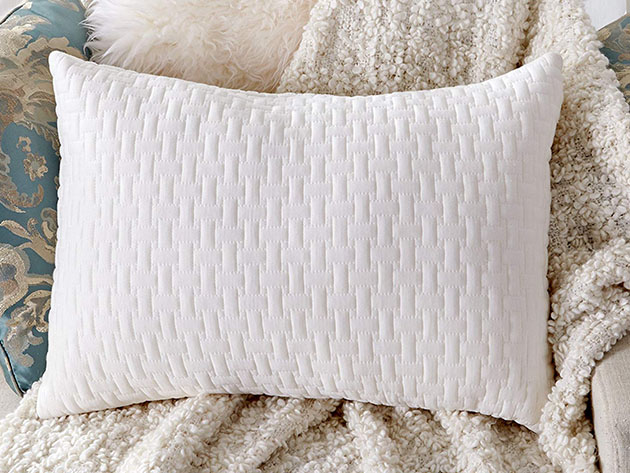 Sable Shredded Memory Foam Pillow with Thickened Bamboo Pillowcase for $21